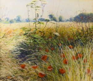 Poppies in a Meadow GP oil & pastel 29 x 33